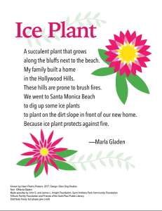 """Ice Plant"" by Marla Gladen."