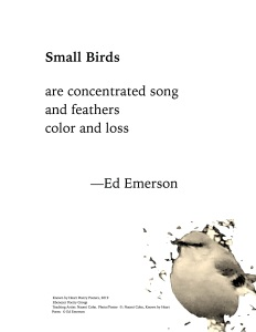 """Small Birds"" by Ed Emerson"